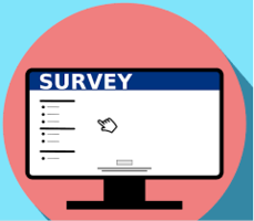 Beginning of the Year Survey