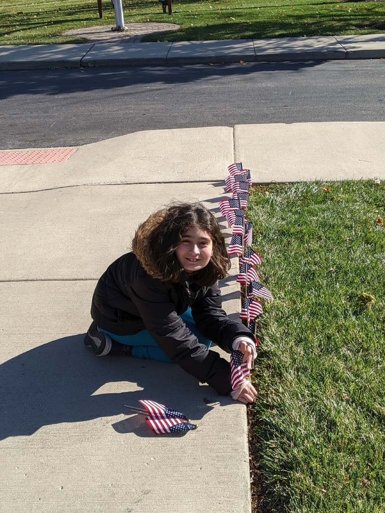 student putting flags in ground